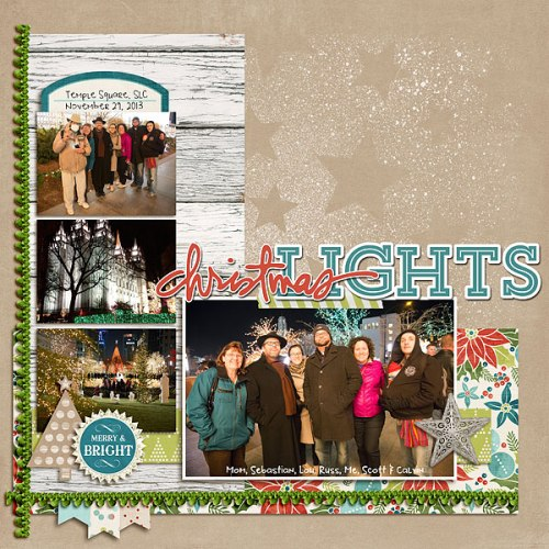 2013-11_christmaslights-forweb